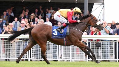 Brick By Brick, pictured winning over 5f at the Curragh last month, goes up in trip