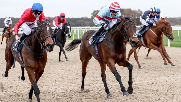 Vintage Folly (striped cap) is the one to side with in the feature event at Yarmouth