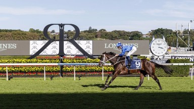 Winx at Royal Randwick