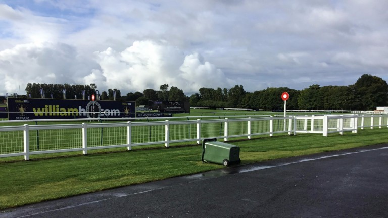 Ayr: the scene at the track on Thursday morning