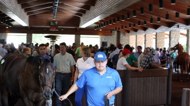 Scenics, 2017 Keeneland September Yearling Sales