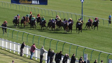 Ayr Bronze Cup 2015: Go Far (yellow visor) leads them home down the middle with New Bidder (left) finishing third against the stands rail