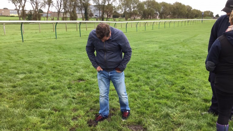 Trainer Noel Wilson inspects the troublesome spot at Ayr