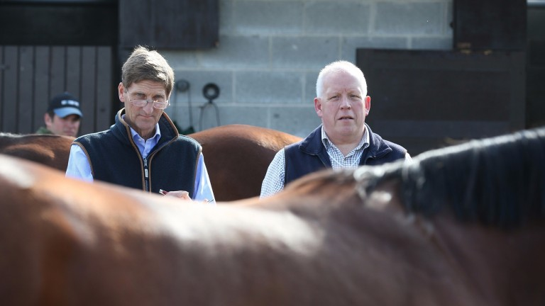 Chris Richardson (left) and John Marsh spearhead the respected team at Cheveley Park Stud
