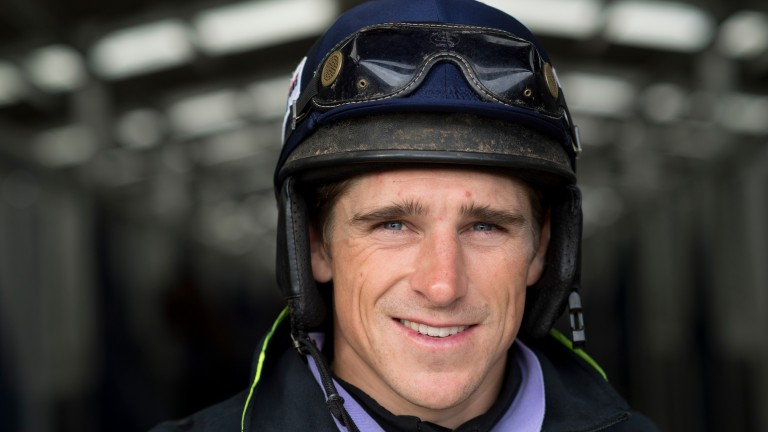 Harry Skelton: the jockey is on flying form as the jumps season gears up