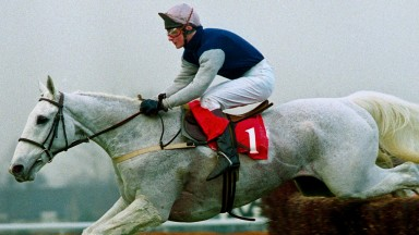 Desert Orchid, a great favourite with Wincanton racegoers, features in the book