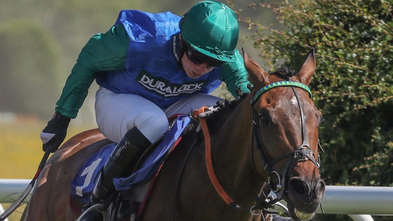 Midnight Shot bids to bounce back to winning form in Uttoxeter's feature chase