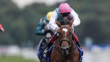 Enable is now odds-on with Coral for next Sunday's Qatar Prix de l'Arc de Triomphe