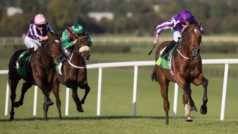 Saxon Warrior under Ryan Moore takes the Juddmonte Beresford Stakes (Group 2).Naas.Photo: Patrick McCann 24.09.2017