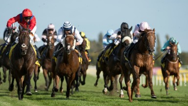 Take Cover (David Allan in red, left): wins the Group 2 sprint at Newbury on Saturday