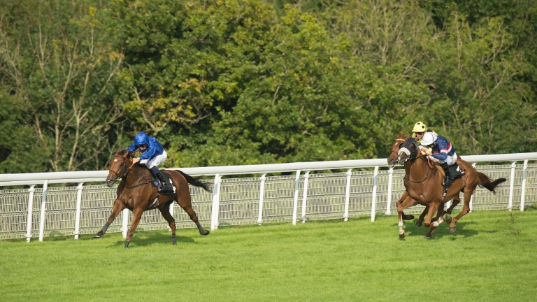 Sky Hunter and William Buick win the Foundation Stakes at Goodwood