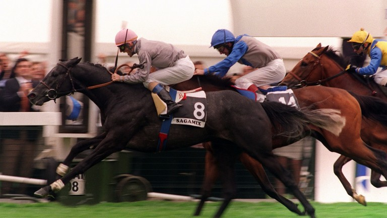 Grey destroyer: Sagamix and Olivier Peslier run down Leggera and Richard Quinn in the 1998 Arc