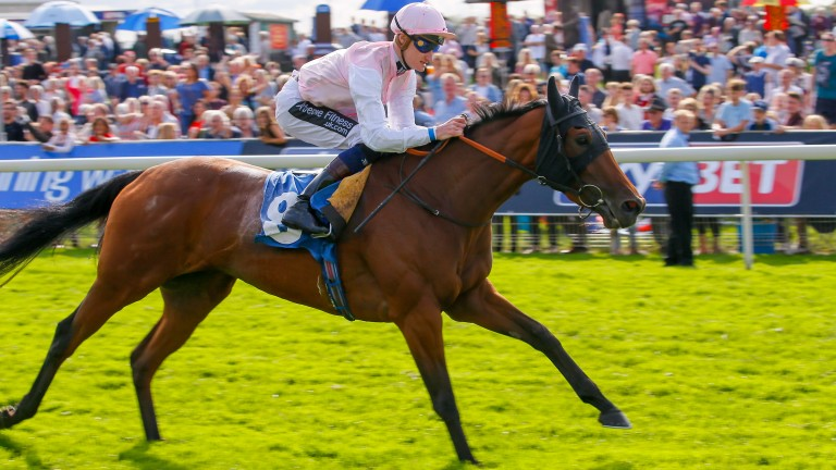 Fleur Forsyte: on the way up and still holds an entry in a Group 1 on Champions Day at Ascot