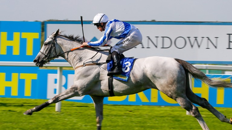 Thundering Blue, a Group horse in the making, will start favourite for the Cambridgeshire