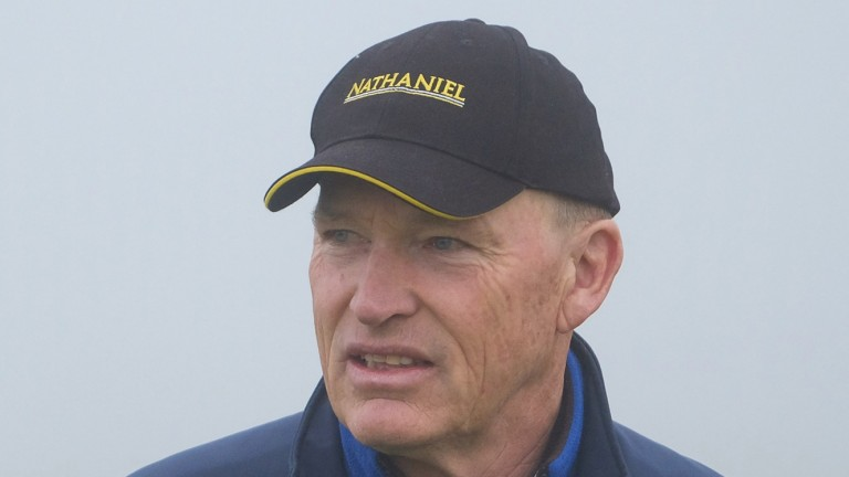 John Gosden: has trained more than 3,000 worldwide winners