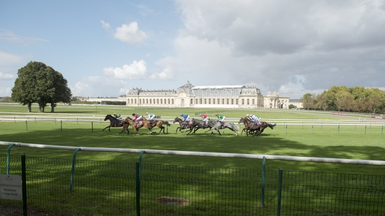 Ice Breeze (pink cap) looks to have a good chance in the Prix Royal-Oak at Saint-Cloud
