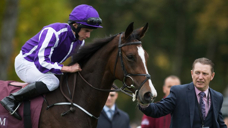 Happily: is on course to run in the Irish 1,000 Guineas