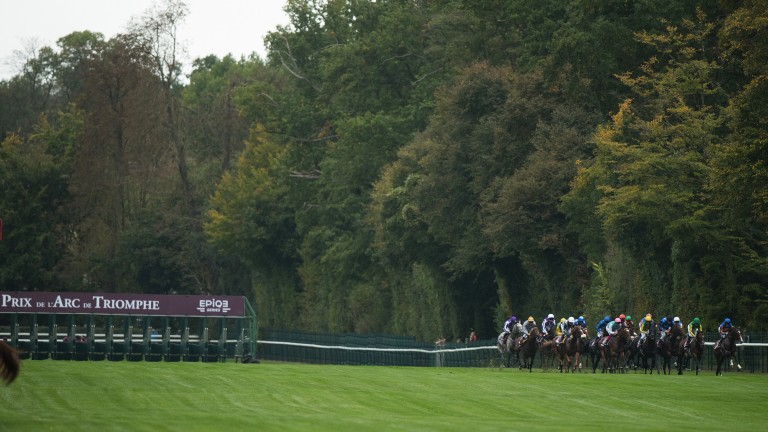 Off and running: the field for the 2017 Prix de l'Arc de Triomphe head for the bend