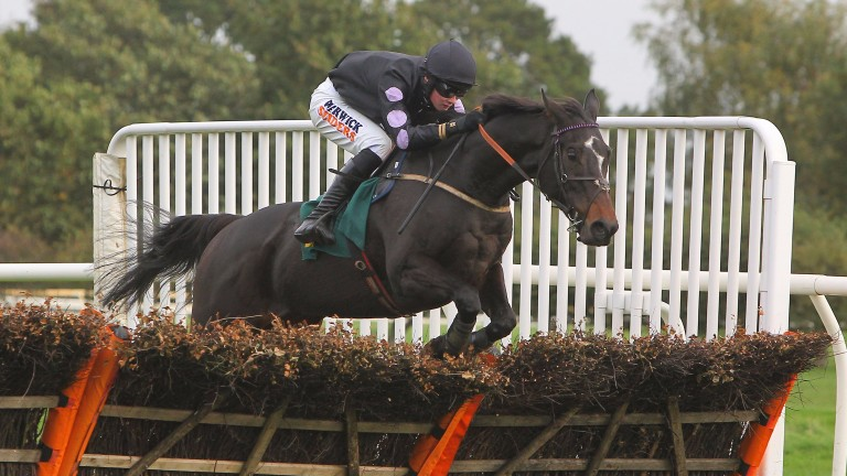 Jonnie Skull winning at Fakenham in 2013: won 21 times from 205 runs