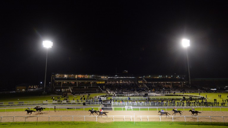 Racing under the floodlights at Newcastle