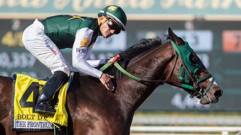 Bolt D'Oro: future after racing lies at Spendthrift Farm