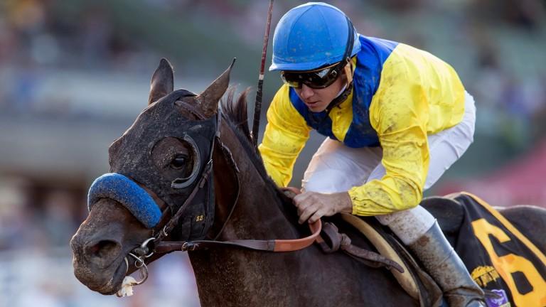 Mubtaahij and Drayden van Dyke win the Grade I Awesome Again Stakes at Santa Anita