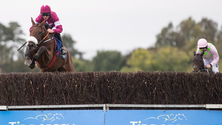 Cap D'Aubois (pink): chasing home Death Duty on chase debut