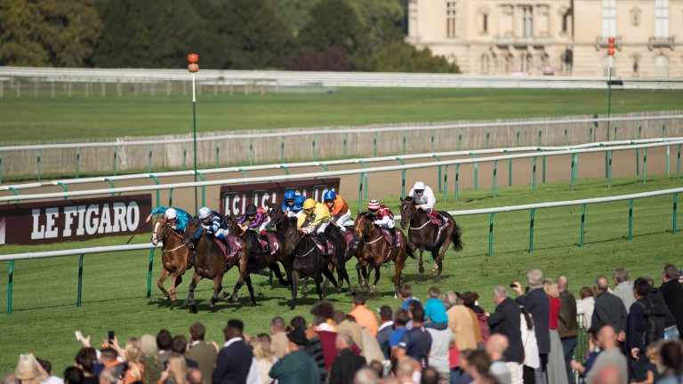 Rules will change at French race meetings such as Arc weekend (above)