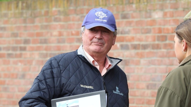 Peter Reynolds: the man who devoted his life to Ballymacoll Stud, pictured at Tattersalls earlier in the week