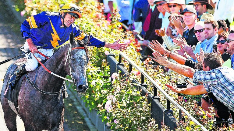 Chautauqua: Australia's top-rated sprinter has been unplaced both starts this season - but has won the last three runnings of the TJ Smith Stakes over the Everest course and distance in April