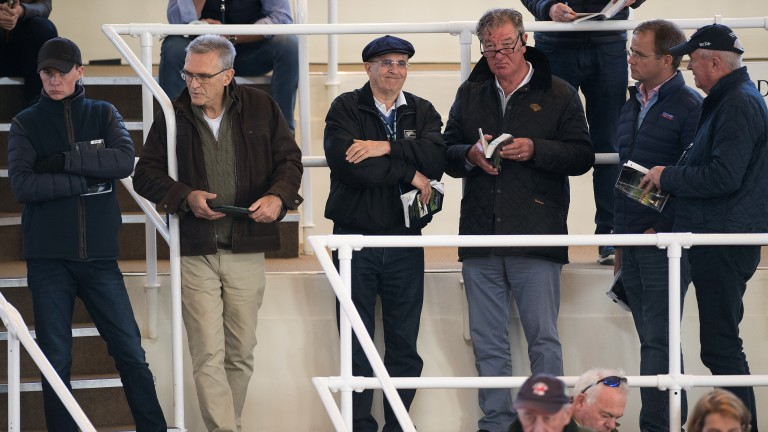 Eyeing the next big buy: team Coolmore on the lookout for new talent
