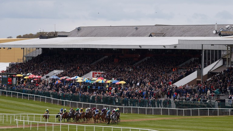 Punchestown: the racecourse will stage an Up The Yard Day for the stable staff in Ireland