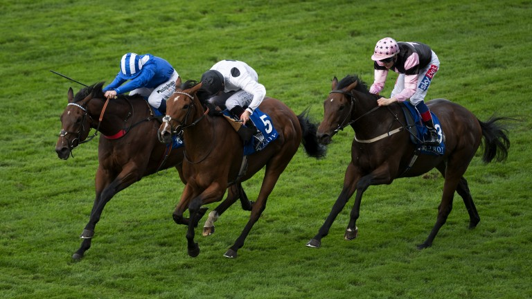Tribute Act (centre) has been supplemented for the Group 2 Duke of Cambridge Stakes