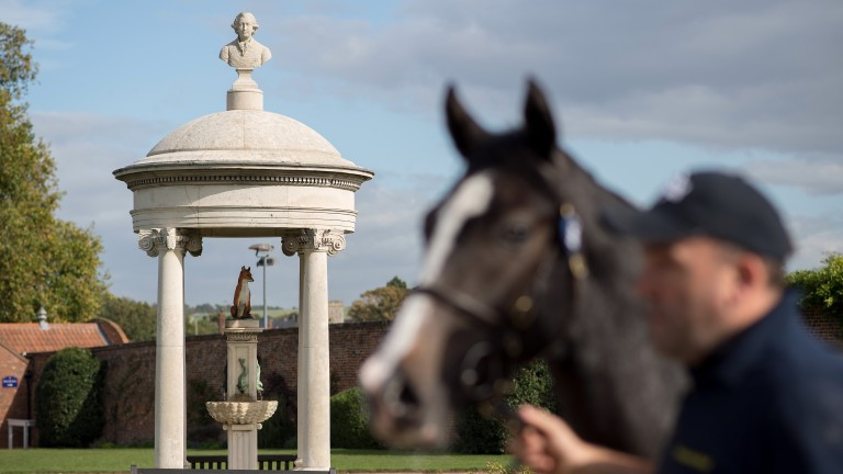 Tattersalls' famous stone cupola, with a fox – the firm's motif – at its centre and topped by a bust of George VI; another yearling is successfully sold