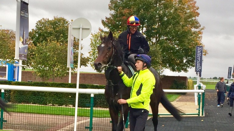 Hey Gaman and Frankie Dettori after working on the Rowley Mile on Saturday morning