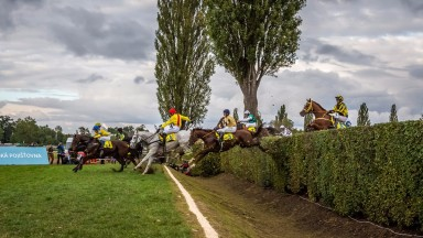 Horses cross the infamous taxis fence in the Velka Parubicka