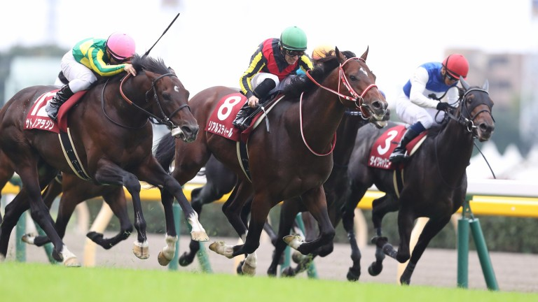 Real Steel (middle): narrow winner of the Grade 2 Mainichi Okan