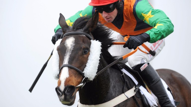 Ask The Weatherman: the nine-time point-to-point winner could be bound for the Welsh National