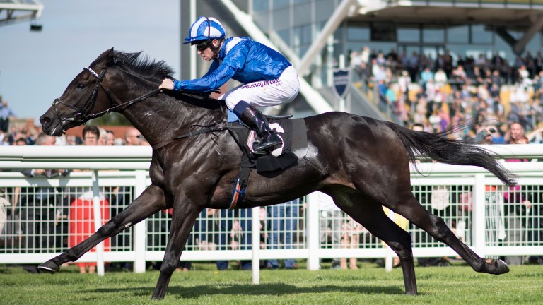 Emaraaty: expected to become a Group 1 horse at some point