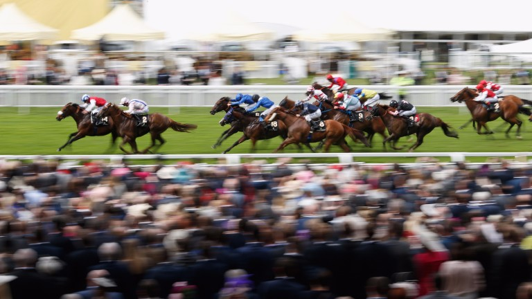 Profitable (left) storms to success in the 2016 King's Stand Stakes
