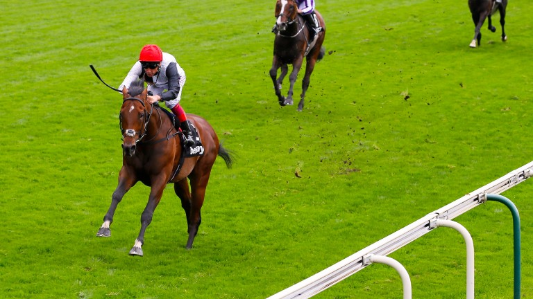 Cracksman: the son of Frankel has impressed on his last two starts