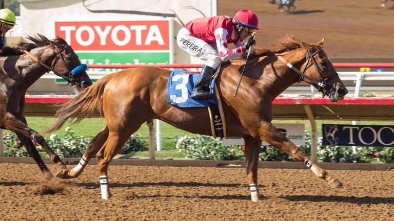 Skye Diamonds on her way to winning the Grade 3 Rancho Bernardo Handicap in August