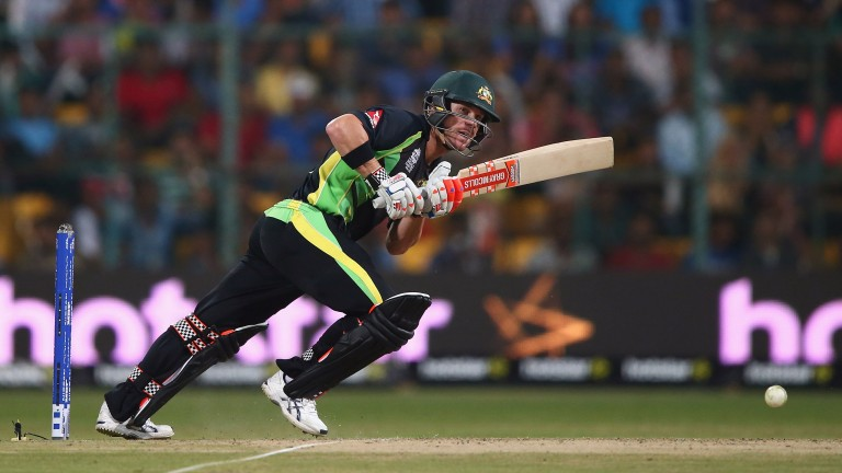Australia opener David Warner clips off his legs in last year's World T20