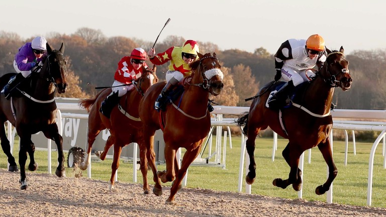 Bollihope (left, Connor Beasley) was disqualified after winning at Newcastle last November