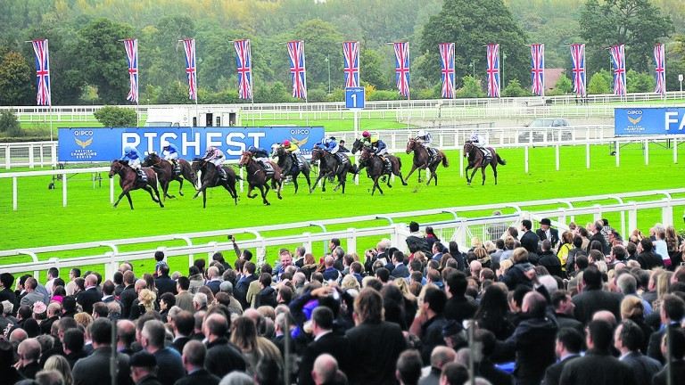 British Champions Day: modern day success story
