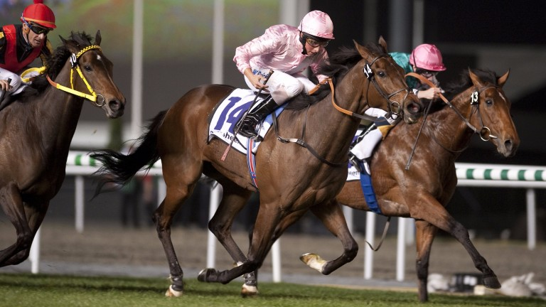 Dar Re Mi (pink and grey sash) storms home in the 2010 Sheema Classic at Meydan