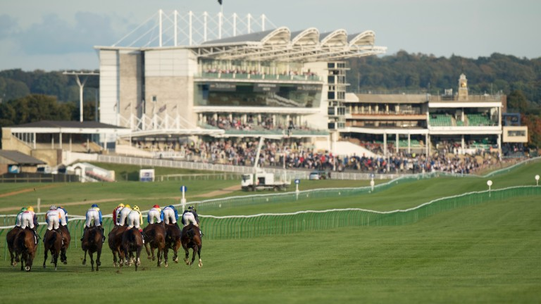 Racing could return in Britain later this month