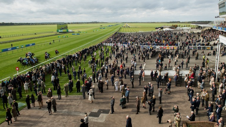 Racing returns on the Rowley Mile on Tuesday
