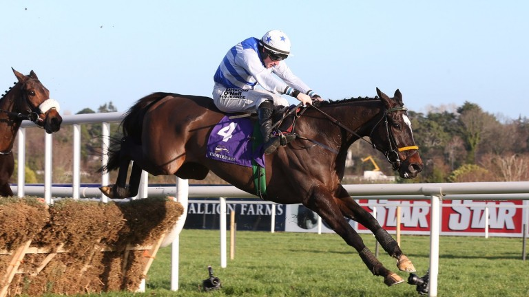 Joey Sasa could have two runs at the Galway Festival