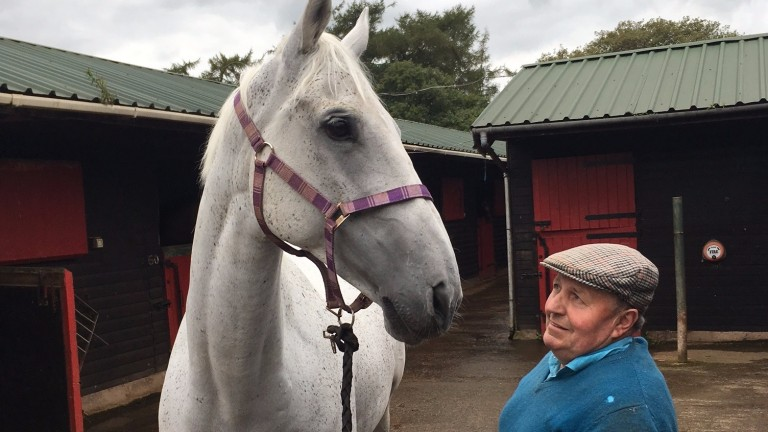 Maurice Barnes with Carrigdhoun at his Tarnside Stables